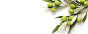 ingrédients olive